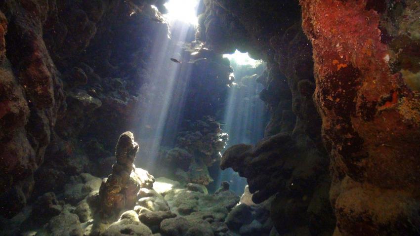 Ergreifende Eindrücke am Middle Reef