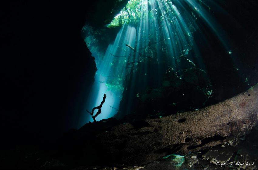 Cenoten Mexiko Höhlentauchen, Planet Scuba Mexico, Mexiko