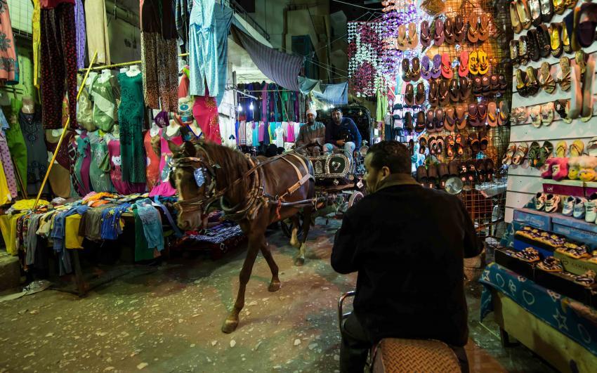 Ägypten tauchen plus, Ägypten überall,Ägypten,Bazar