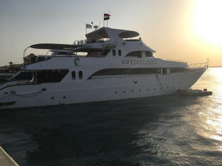 M/Y Sea Serpent Fleet , Sea Serpent, Ägypten