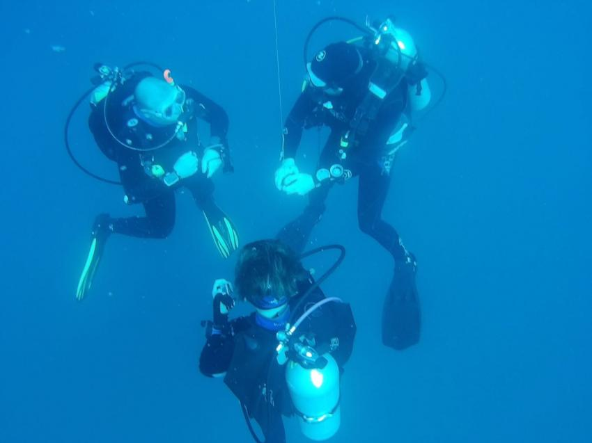 Absolut Diving - Ausbildung, Absolut Diving, deutsche Tauchschule, PADI, TDI, NAUI, Kreislaufgerät, Rebreather, CCR, TEC, Nitrox, TRIMIX, Kata, Thailand, Phuket, Safaris, Tagestouren, Liveaboard, Similans, Phi Phi, Schnorcheln, Andamanensee