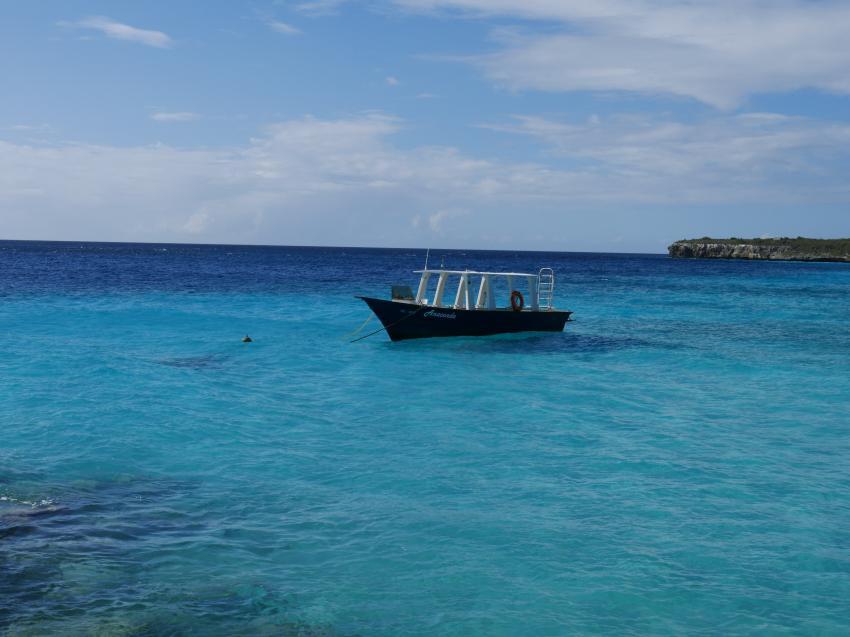 Anaconda, Coral Divers, Niederländische Antillen, Curaçao