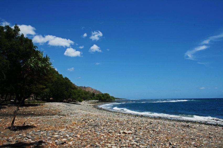Timor L'este - diverses, diverse Tauchplätze,Osttimor