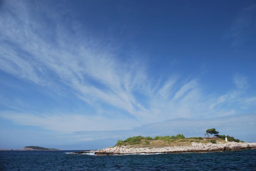 Tauchen um Mlini/Dubrovnik, Dubrovnik,Kroatien,Insel