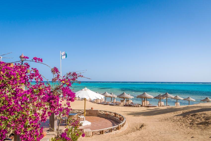 SWD19, Scuba World Divers Marsa Alam, Lagoon View Resort, Ägypten, El Quseir bis Port Ghalib