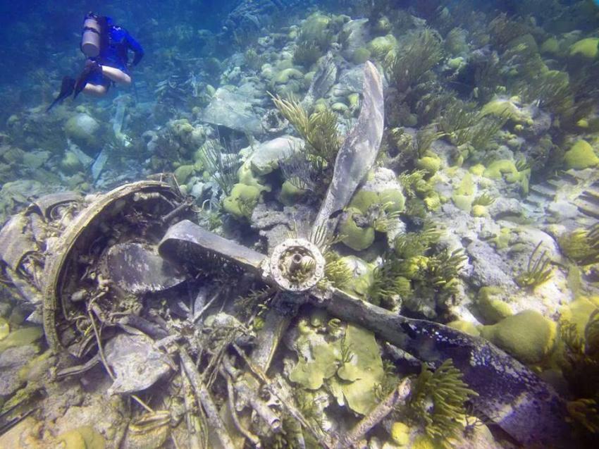 Bermuda Scuba Diving, Bermuda Tauchplätze, Bermuda