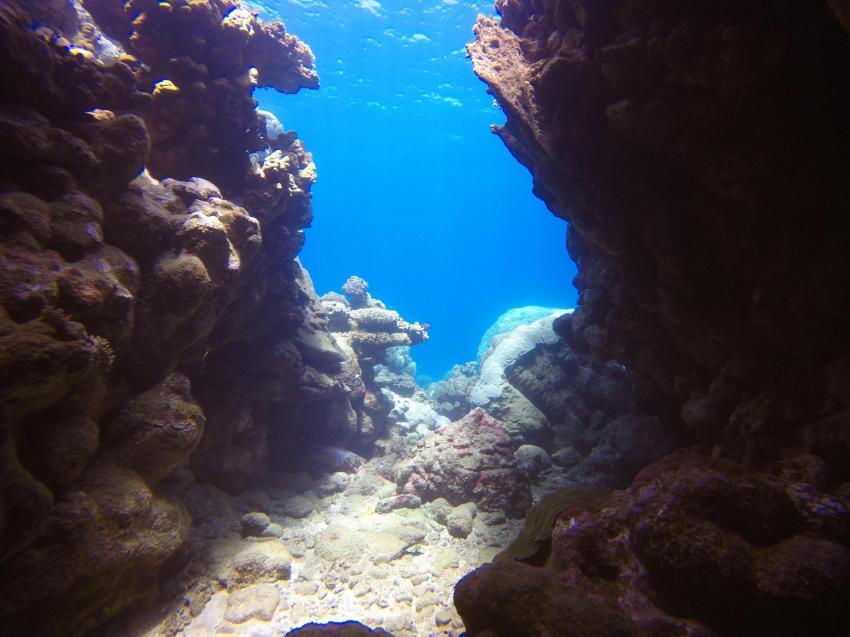 Scuba World Divers SuneoClub Reef Marsa_1, Tauchen Ägypten Marsa Alam, Scuba World Divers, SuneoClub Reef Marsa, Port Ghalib, Ägypten, El Quseir bis Port Ghalib
