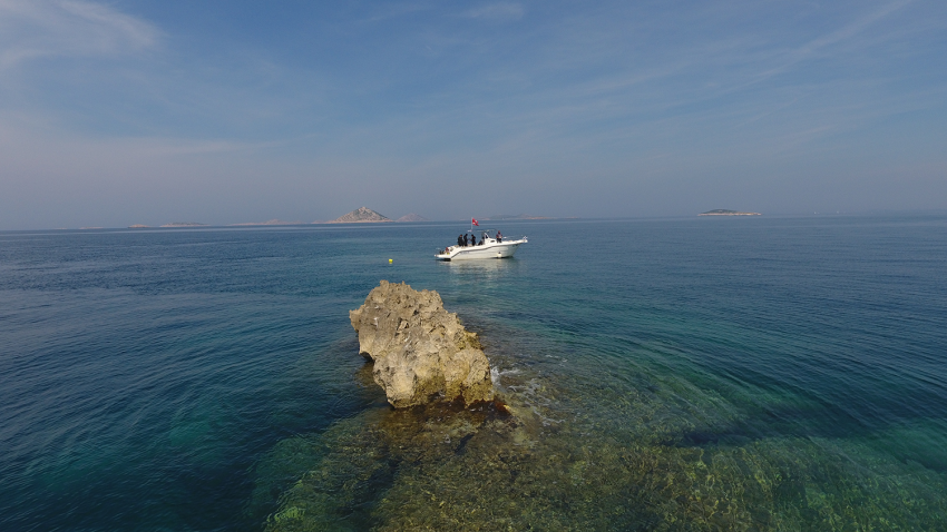 Bacvica, Steilwand, Murter, Kroatien, Najada diving, Murter