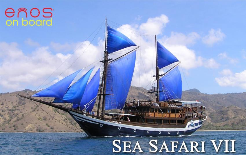 Komodo;safari;indonesien;indonesia;labuan bajo, Sea Safari 7, Indonesien, Allgemein