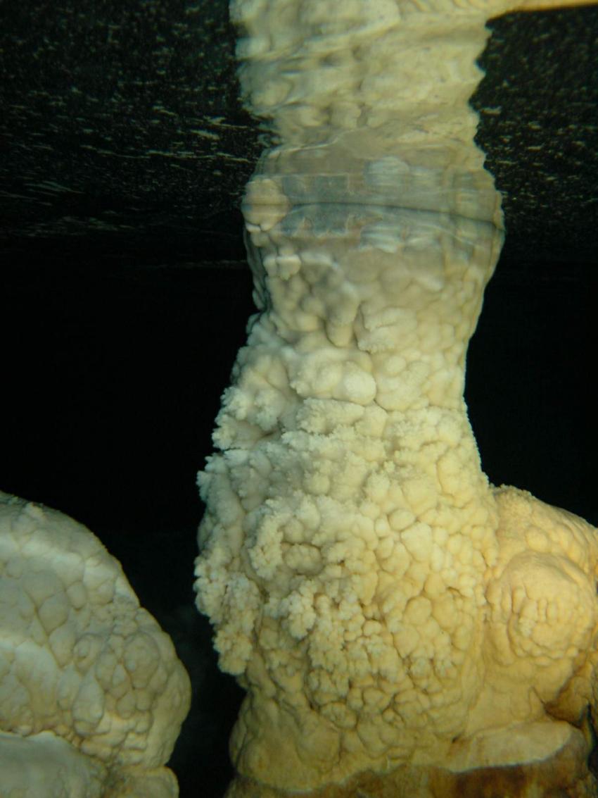 Höhlentauchen, Höhlentauchen,Dominikanische Republik,Stalagmiten,Tropfsteinhöhle,Höhlen tauchen