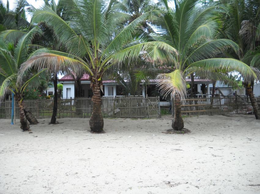 Phaidon Resort & Ranay Explorer, Pandan, Antique