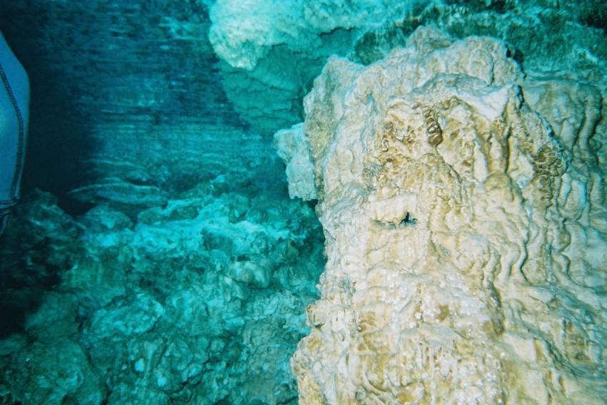 Höhle La Sirena / Boca Chica, Boca Chica,Dominikanische Republik