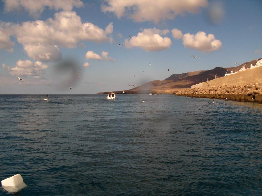 vor der Hafenmauer von Morro Jable, Fuerteventura - Morro Jable,Spanien