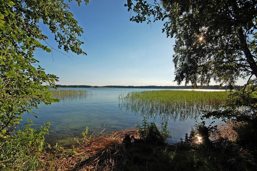 Parsteinsee, Parsteinsee, Parstein, Deutschland, Brandenburg