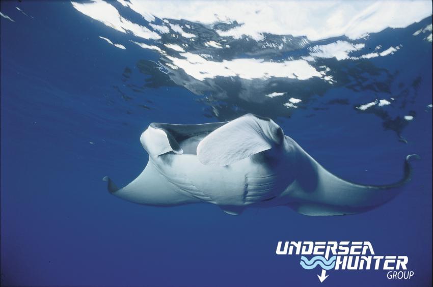 Undersea Hunter Group, Cocos Islands, Undersea Hunter, Costa Rica