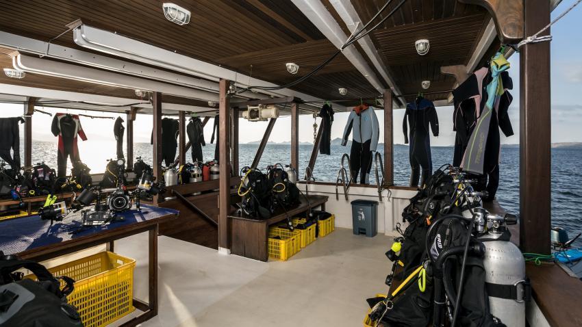 Diving deck Mv Ambai, M/V Ambai, Indonesien, Allgemein
