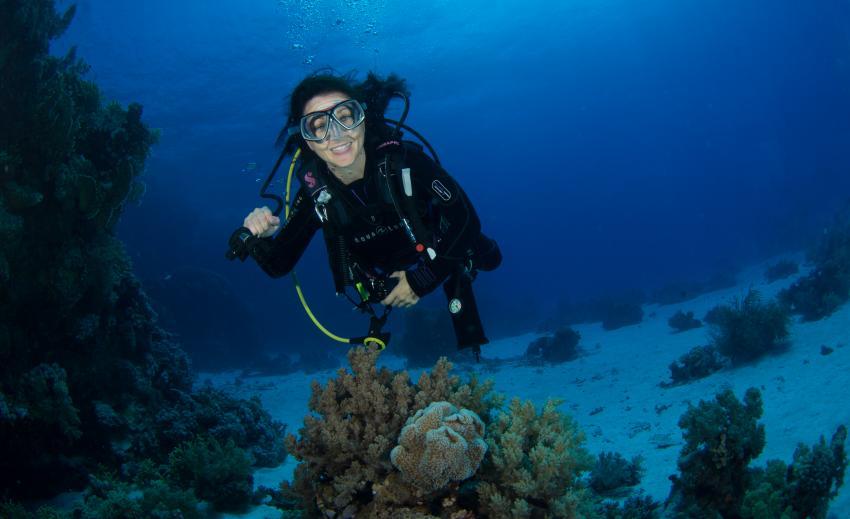 Fundive @ Coraya Bay, Coraya Divers, Coraya Beach, Marsa Alam, Ägypten, Marsa Alam und südlich