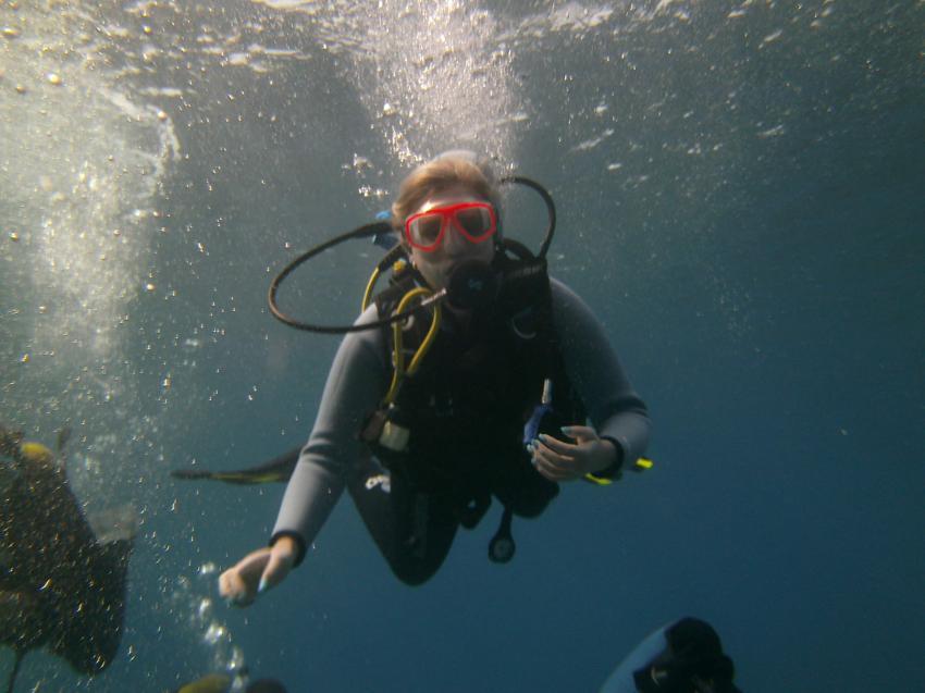 Adeje Tauchclub Ocean Trek, Teneriffa, Spanien, Kanarische Inseln