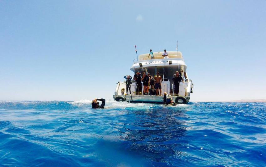 Boat Diving with Circle Divers, Circle Divers, Circle Divers, Hotel Badawia, Ägypten, Sinai-Süd bis Nabq