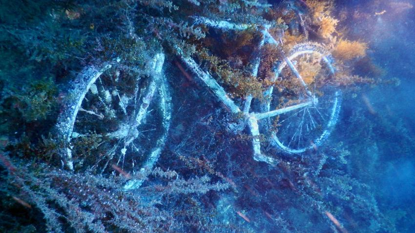 Fahrrad auf der Don Pedro, Wrack Don Pedro, Ibiza, Spanien, Balearen