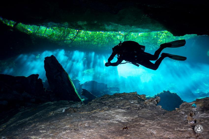 Lichtspiele und Blick in die Dschungel, Cenote Adventures, Mexiko