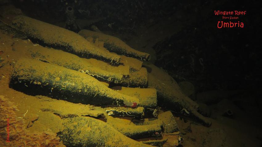 Ladung Umbria: Weinflaschen, Umbria Wrack Sudan Port Sudan Seawolf Diving Safari Dominator Hans Hass, Umbria - Wingate Reef, Sudan