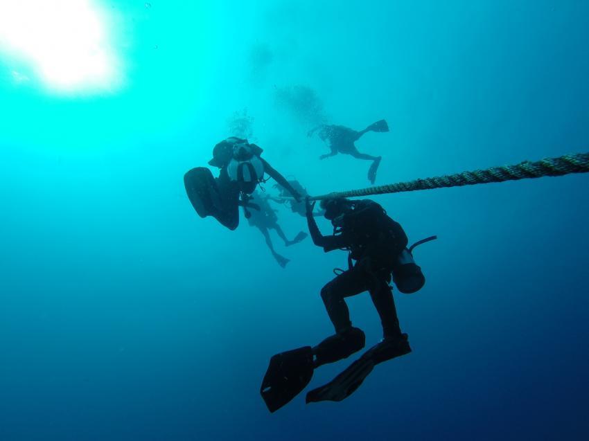 Aufstieg , Deutsche Tauchbasis, Sons of Poseidon, Key Largo, USA, Florida