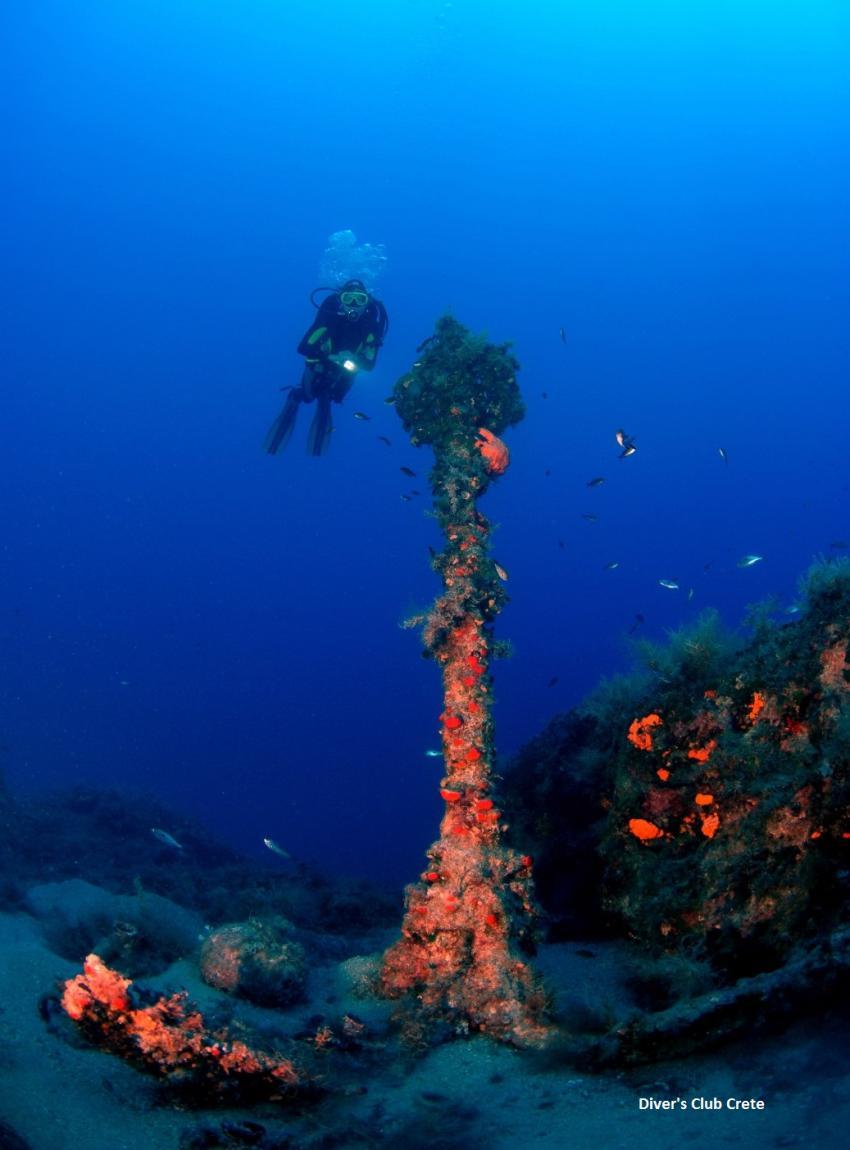 Big Anchor, Reef Diving, Divers Club Crete, Agia Pelagia, Kreta, Griechenland