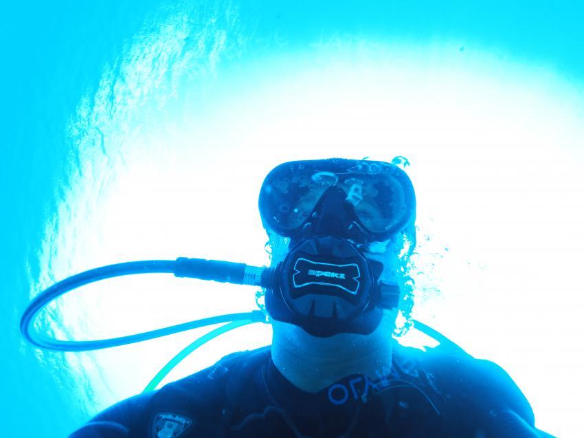 Mike, Dive Pirates, Österreich