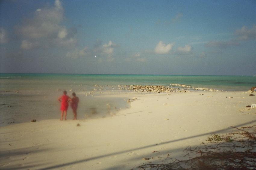Lohifushi  ( Nord Male Atoll ) Nach der Welle, Lohifushi,Malediven,tsunami,welle,zerstörung,überflutung,danach,strand,idylle