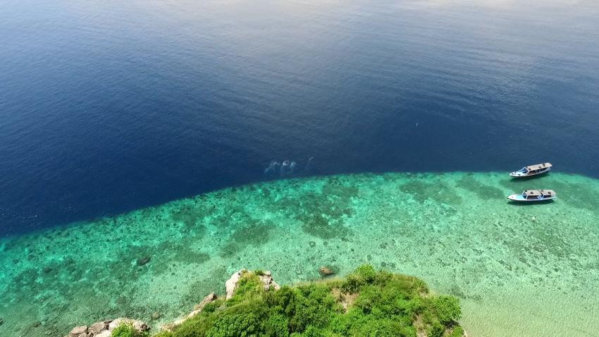 Riff vor Insel Menjangan, Extra Divers Gawana-Bali, Indonesien, Bali