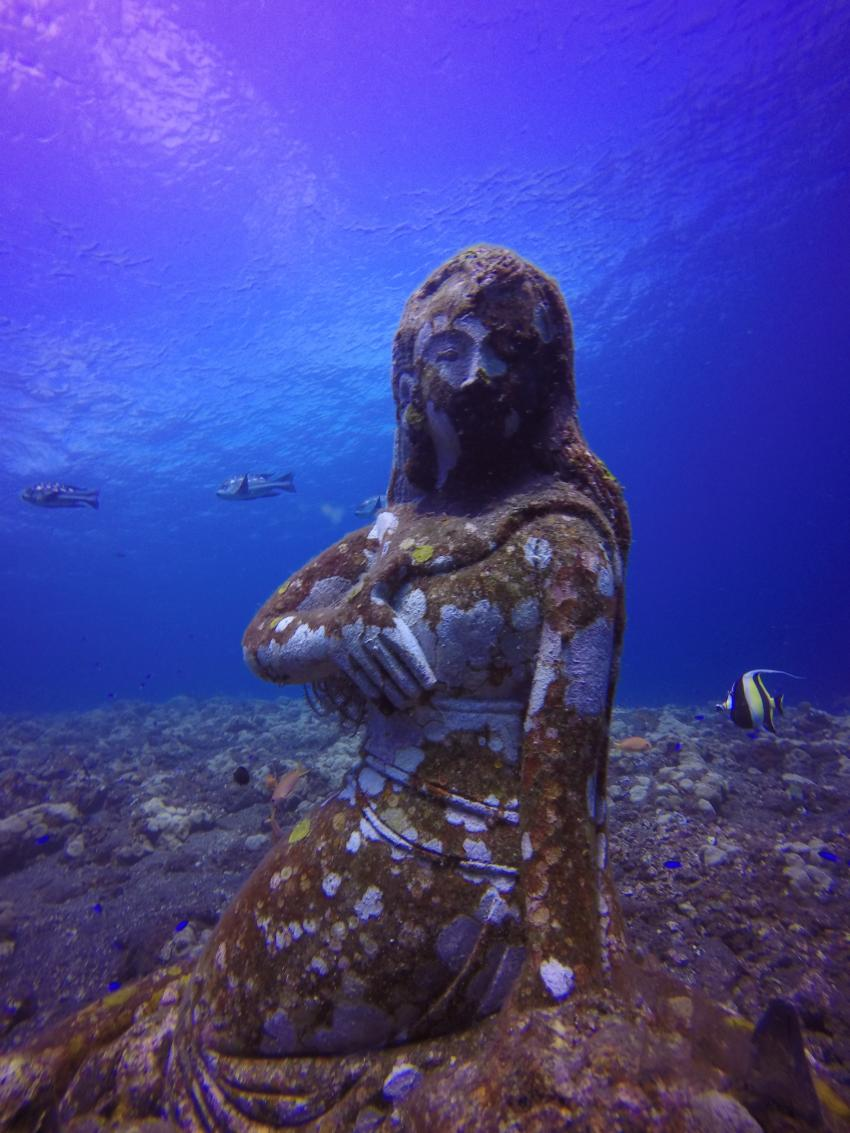 Tasik Divers Bali, Indonesien, Bali