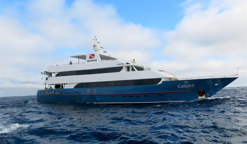 Calipso, Galapagos, Ecuador, Galapagos