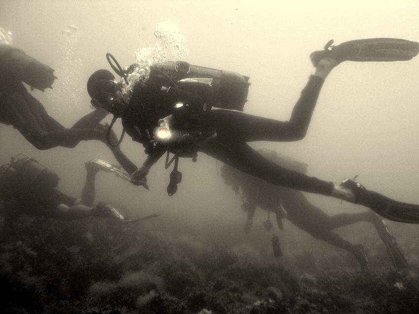 Golf von Tarent, Marina die Pulsano, Apulien,Italien,Taucher,schwarz/weiß Aufnahme
