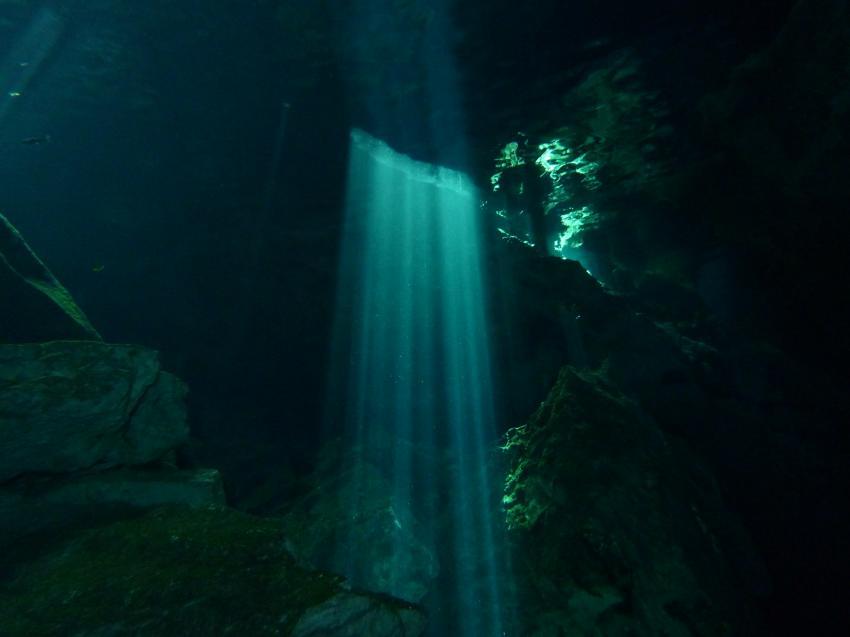 Tolles Licht in der Cenote