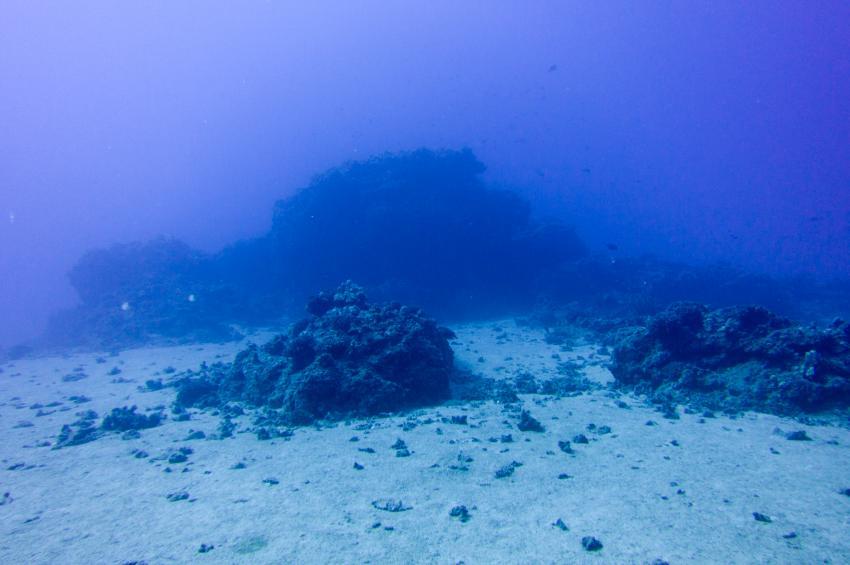 85 ft Hawaiian Reef, Maui Süd,Hawaii,USA