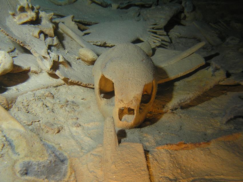 Sipadan - Höhlentauchen, Sipadan,Malaysia,Skelett,Schildkröte