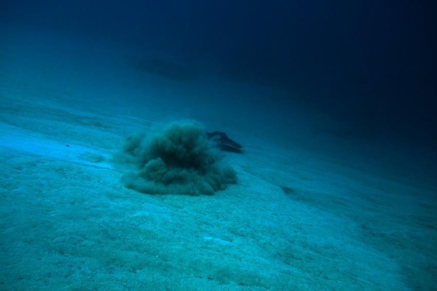 Daivoon Dive Center auf Lanzarote in Costa Teguise, Spanien, Kanaren (Kanarische Inseln)