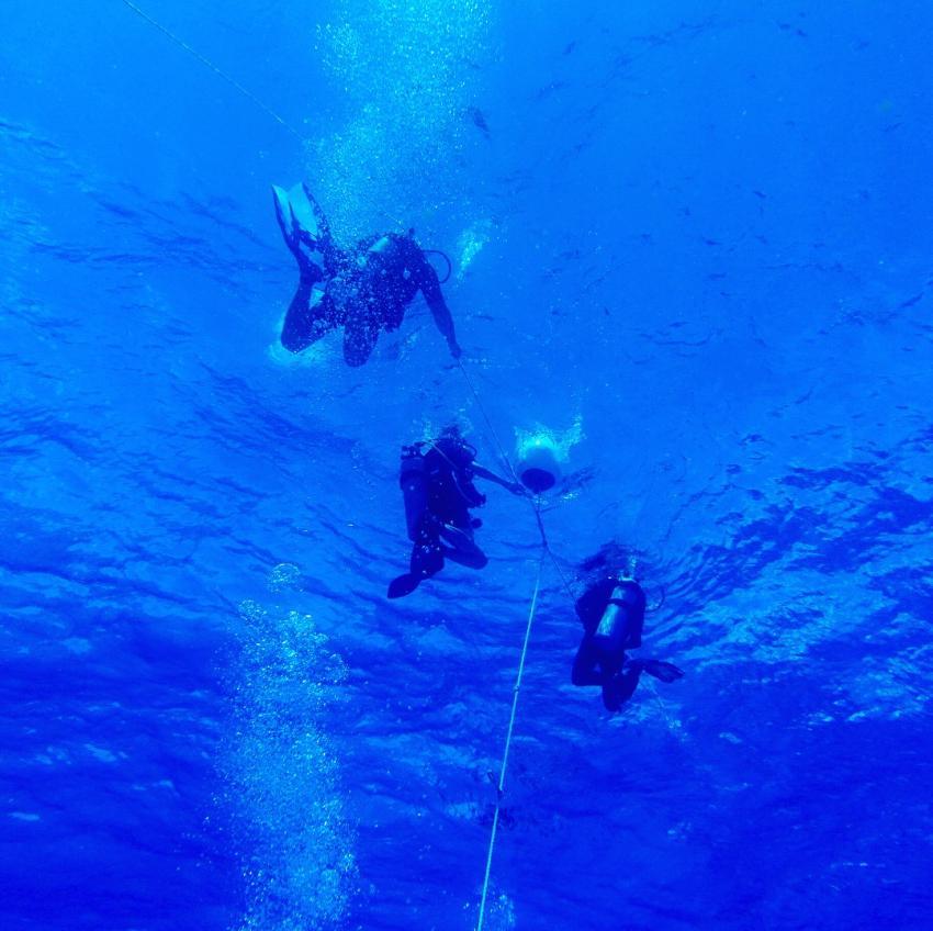 USS Spiegel Grove, Sons of Poseidon, Key Largo, USA, Florida