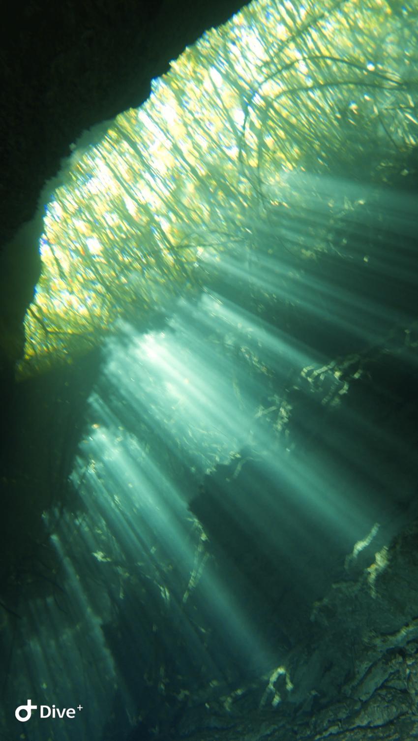 Höhlen-/Cenoten Tauchen