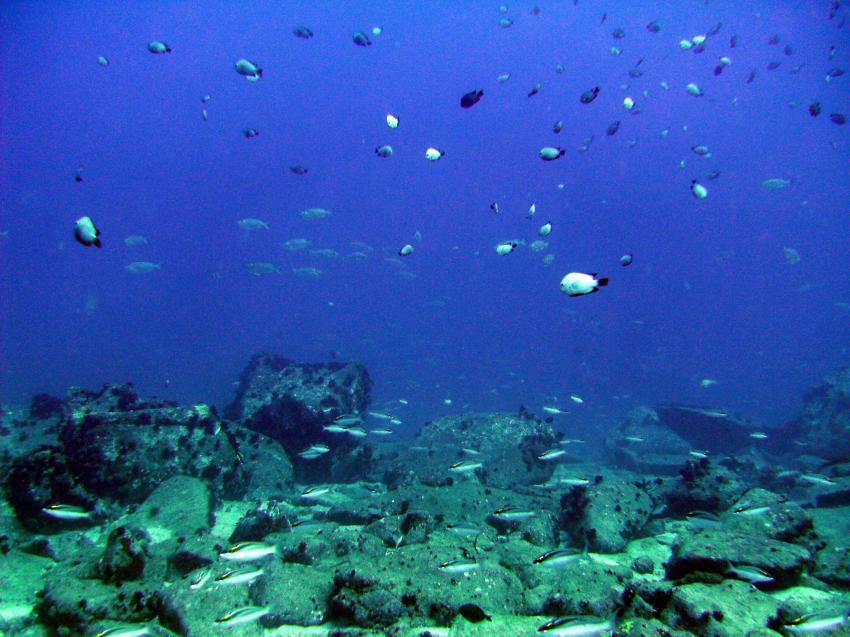 Mahé - Shark bank, Mahe,Beau Vallon,Shark Bank,Seychellen