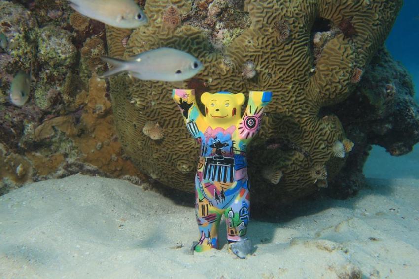 """""""Berliner Bär 20.000 Meilen unter dem Meer"""", Curacao Divers (Sun Reef Village), Sint Michiel, Niederländische Antillen, Curaçao"""