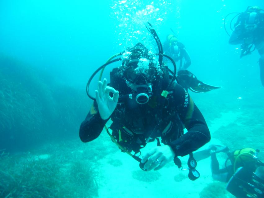 Albatros Diving, Port of Cala Bona, Mallorca
