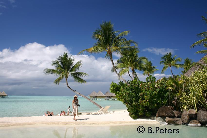 Bora Bora, Bora Bora,Französisch-Polynesien,Strand,Sand,Palmen