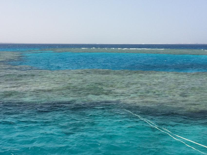 Korallenriff Kamul Gebir bei Safaga, Extra Divers Sharm El Naga, Kamul Gebir, Extra Divers Sharm El Naga, Extra Divers - Hotel Viva Blue, Sharm el Naga , Ägypten, Safaga