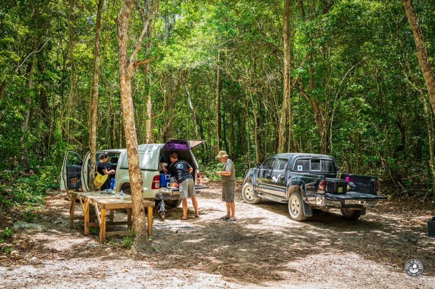 Mittagssnack im Dschungel, Cenote Adventures, Mexiko