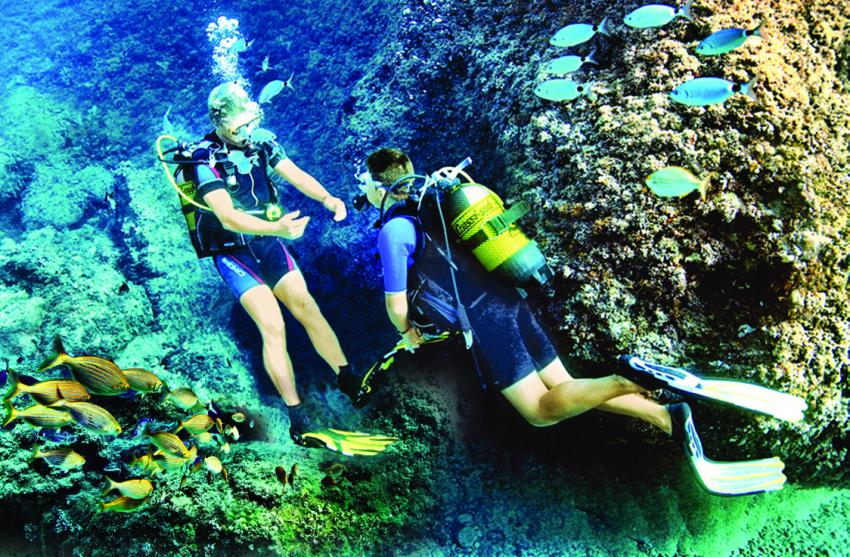 Diving with Cool Divers, Cool Divers, Puerto Andratx, Mallorca, Spanien, Balearen