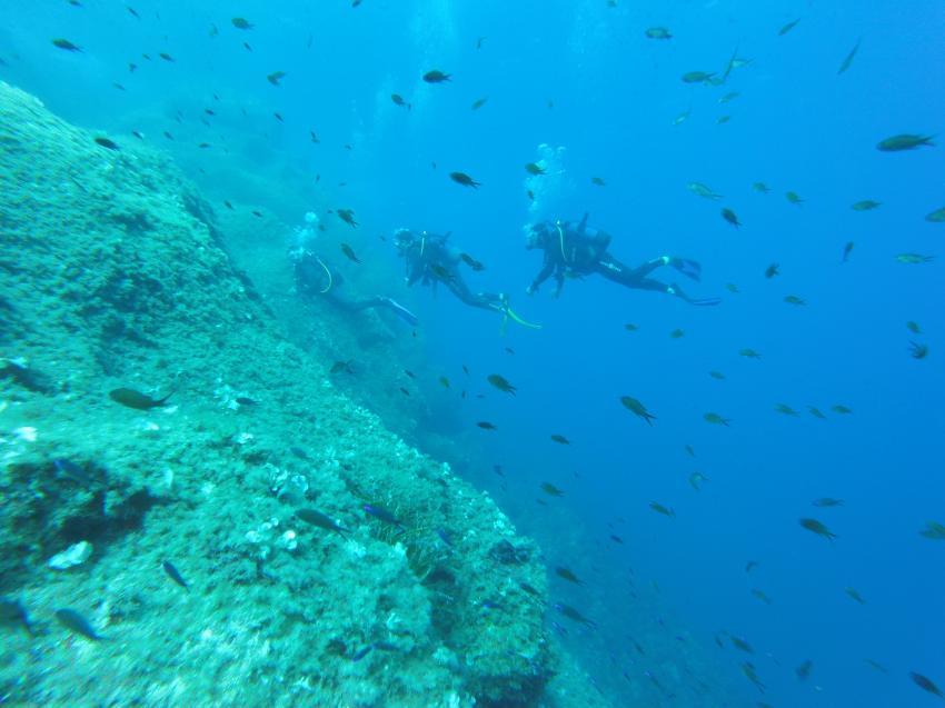 Plongée Porto, Marine de Porto, Korsika, Frankreich
