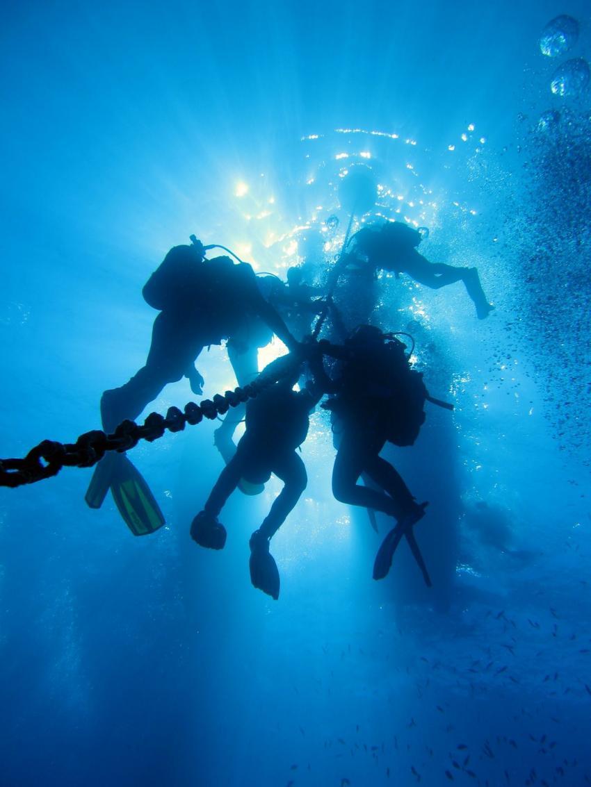 Manta Diving Madeira, Canico