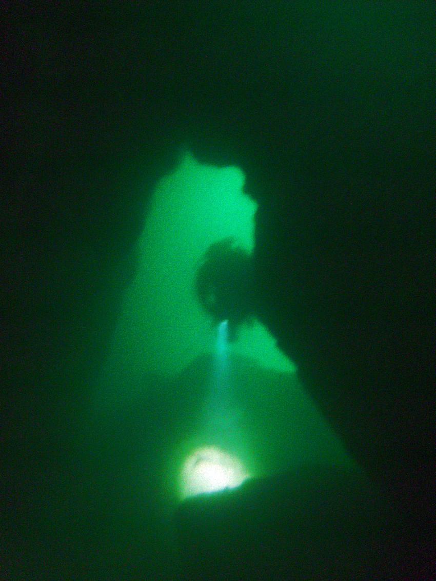 das gibt's im Gardasee zu sehen ...., Gardasee, Italien, Sportdiver Club